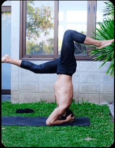 Spider Flow Yoga