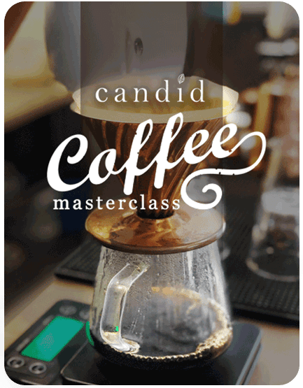 Candid Coffee Masterclass                     (Private Classes)